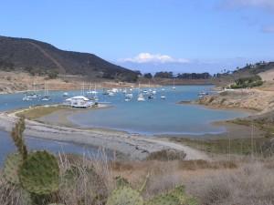 Catalina Isle