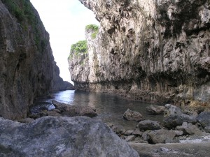Niue 40