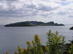 Tors Cove 26
